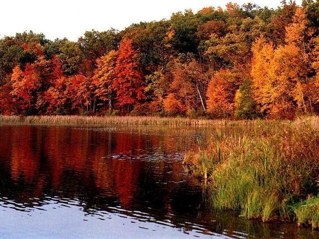 Merveilles de la nature ... dans Belles images emob8kjs