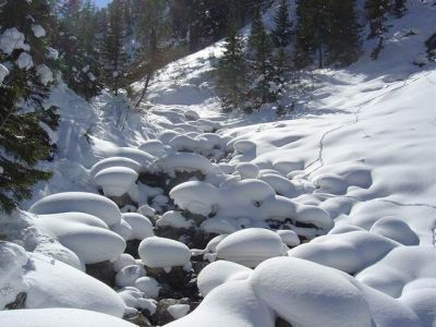 117 IMAGES PAYSAGES NEIGE